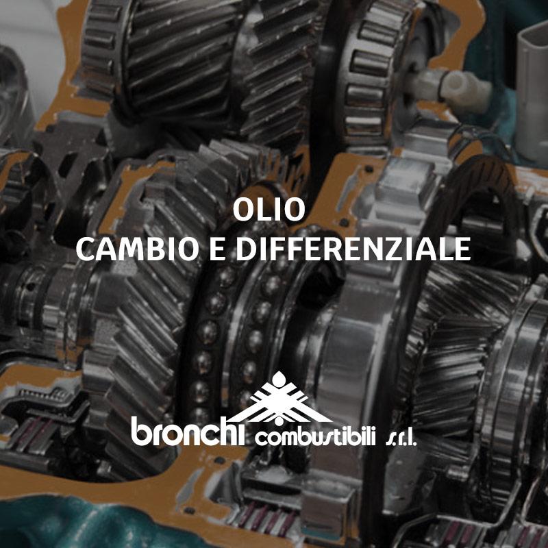Olio cambio e differenziale