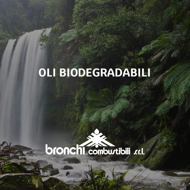 Olio biodegradabile