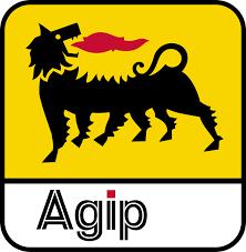 agip-7005-0w30